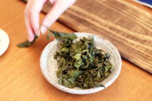 水分を含んだフレッシュな台湾茶の茶葉