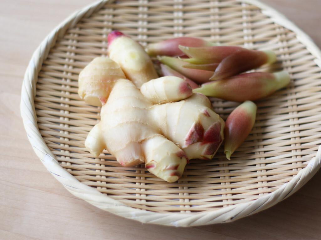 カゴに盛られたフレッシュな新生姜とミョウガ